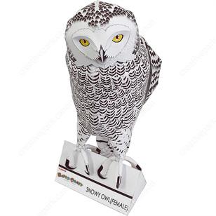 Snowy Owl FemaleAnimalsPaper CraftBirdsAnimalsowl