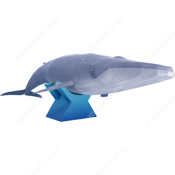 Blue Whale Marine Animals Animals Paper Craft Canon Creative Park