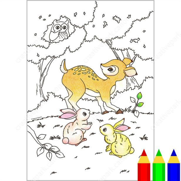 Boyama Sayfasi Vahsi Yasam Orman Hayvanlari Boyama Sanat